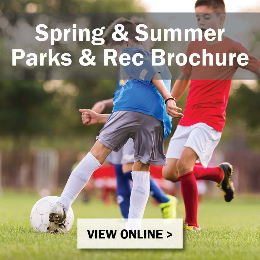 Spring and Summer 19 Parks Brochure Button